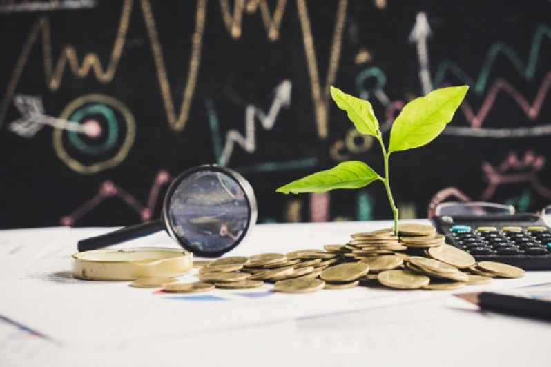 tree-growing-on-stack-of-coins-on-financial-chart-report-with-magnifying-glass-and-calculator-in-background-idea-for-business-growth-concept_2379-890
